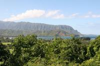 Kaui ocean and ridge